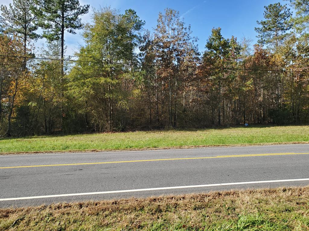 4 Christanna Hwy Property Photo - Lawrenceville, VA real estate listing