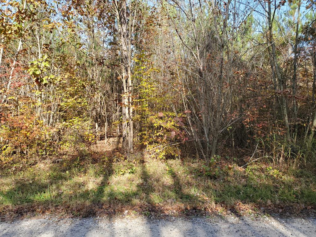 8 Millville Road Property Photo - Lawrenceville, VA real estate listing