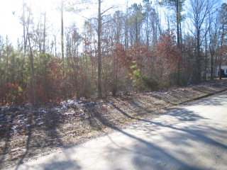 728 130 Moores Ordinary St Property Photo - Kenbridge, VA real estate listing