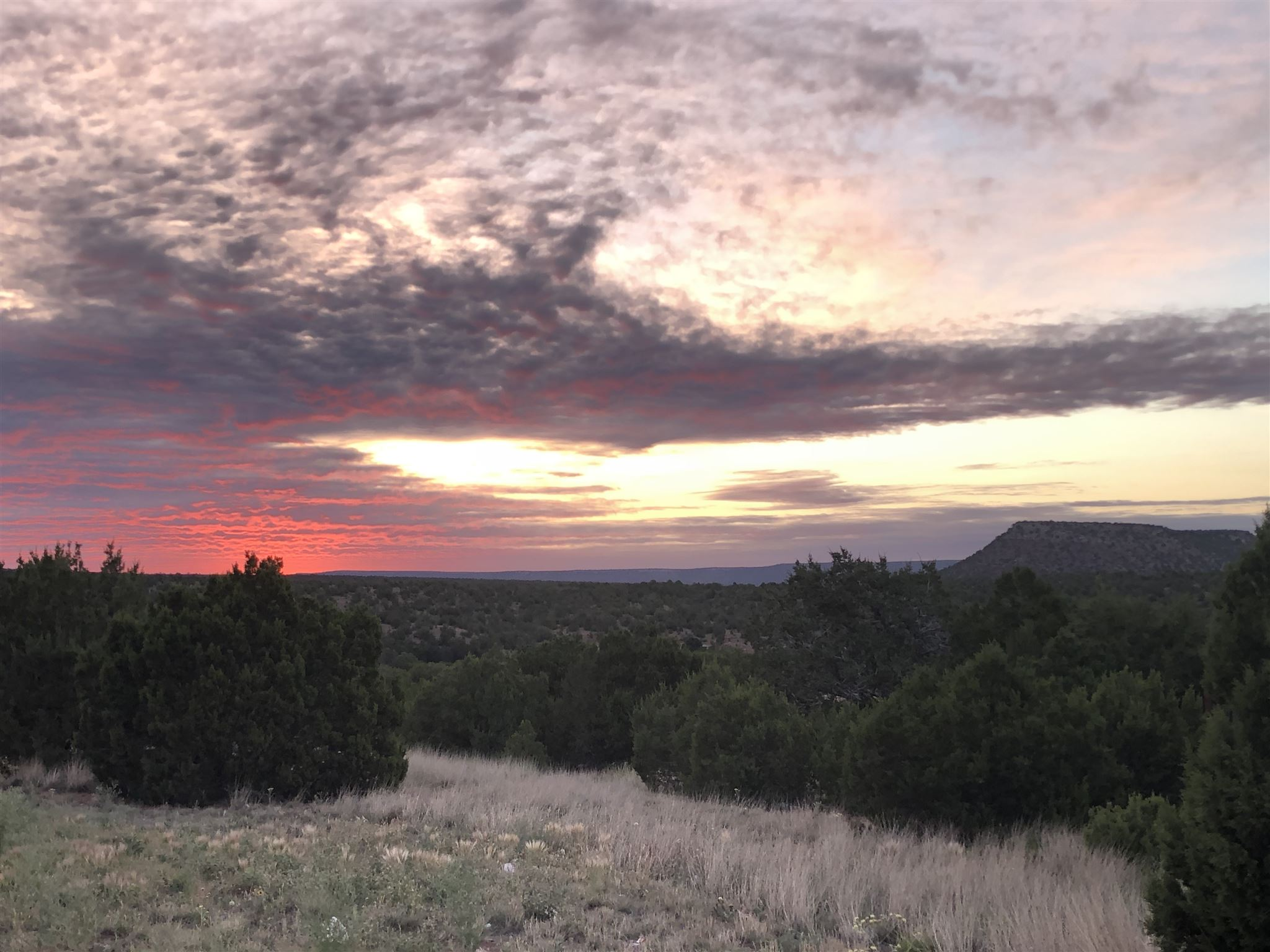 40 Pintada Ranches Property Photo - Santa Rosa, NM real estate listing