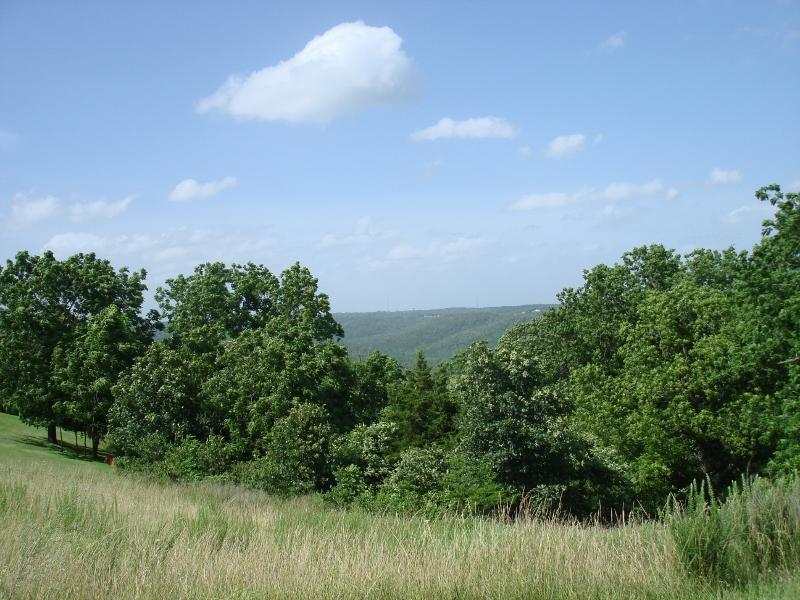 Tbd Whitetail Crossing Lots Property Photo - Walnut Shade, MO real estate listing