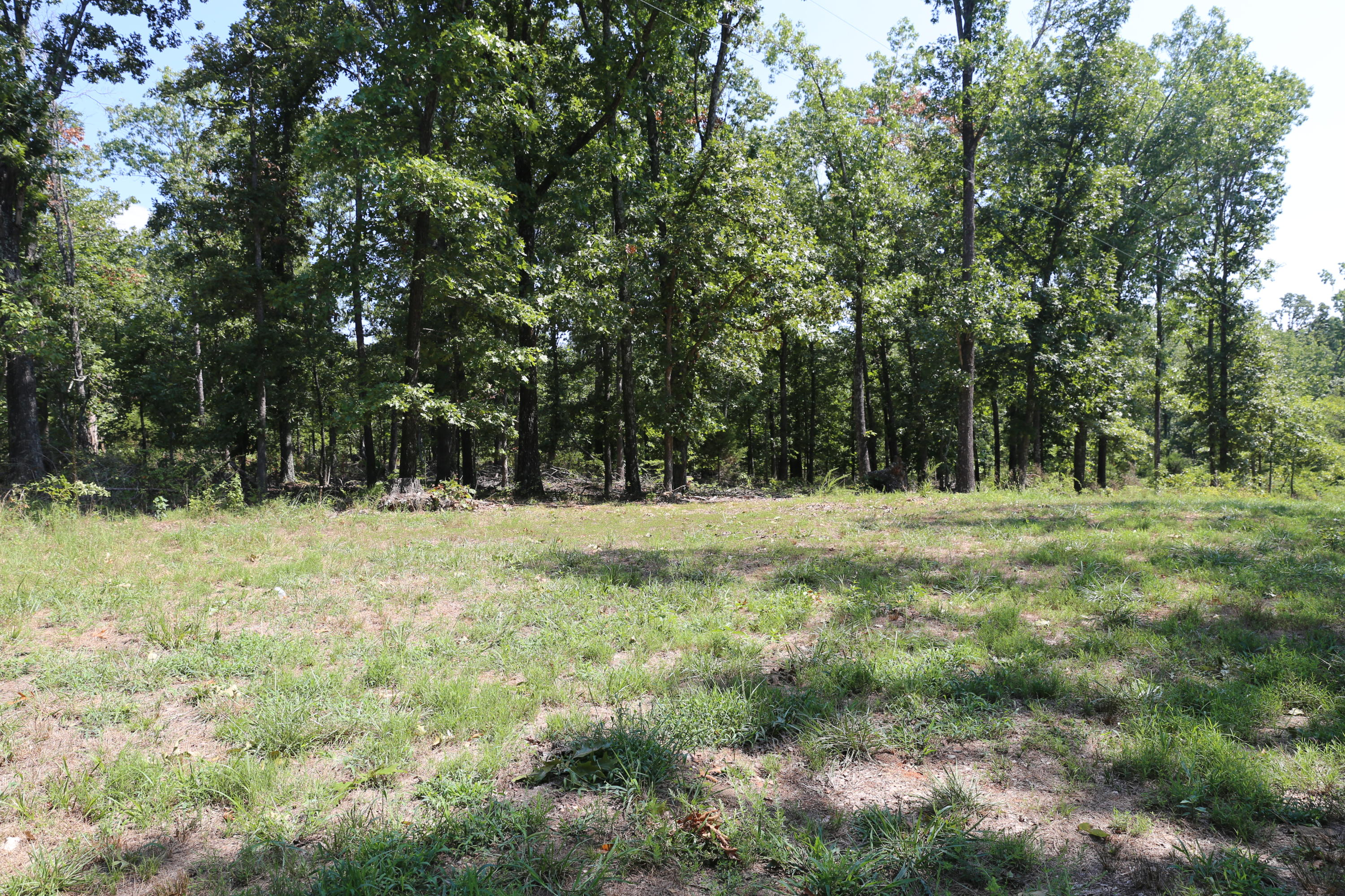 Tbd Highway Bb Lot 13 Property Photo