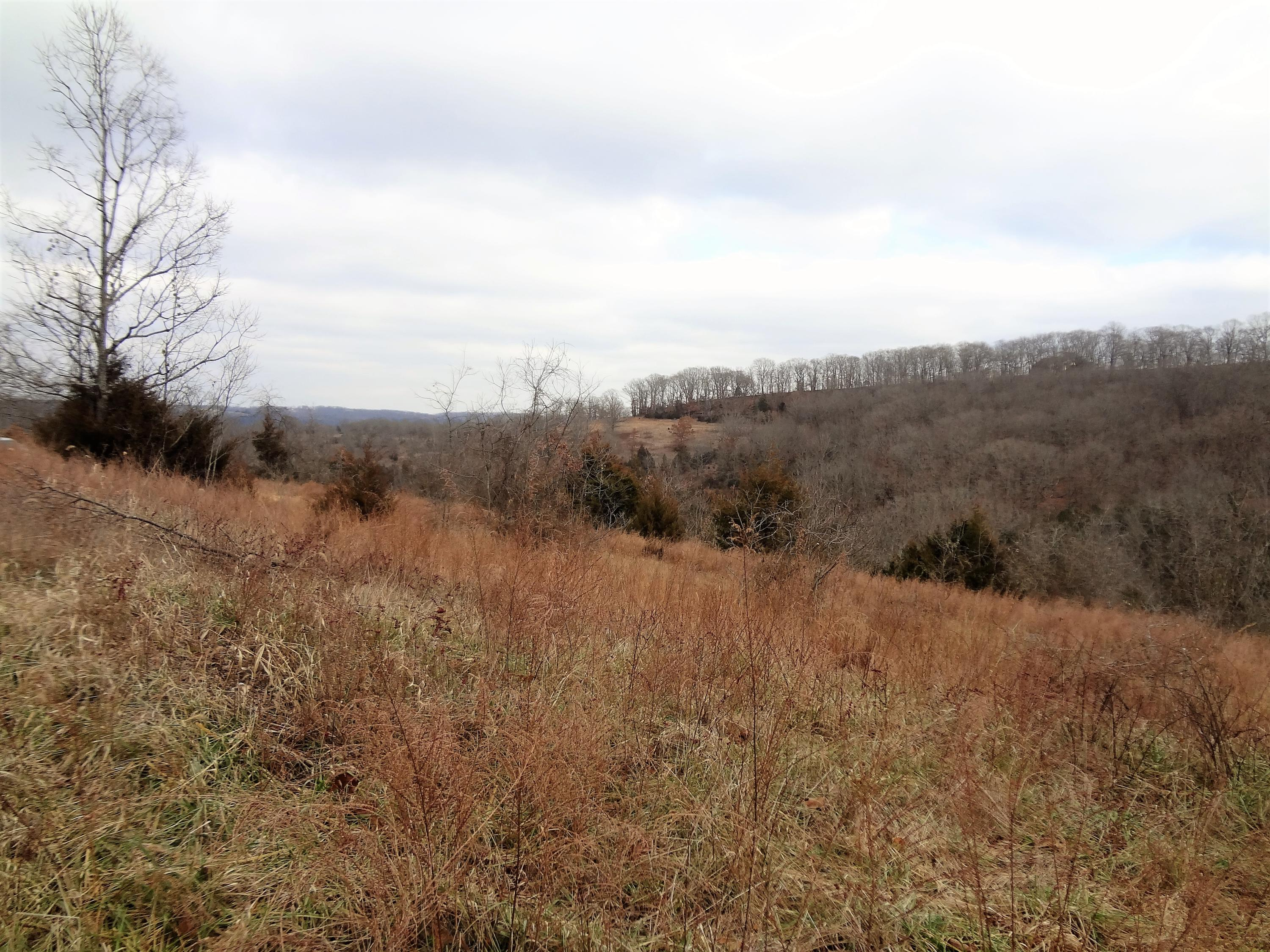280 Jacks Hollow Road Property Photo