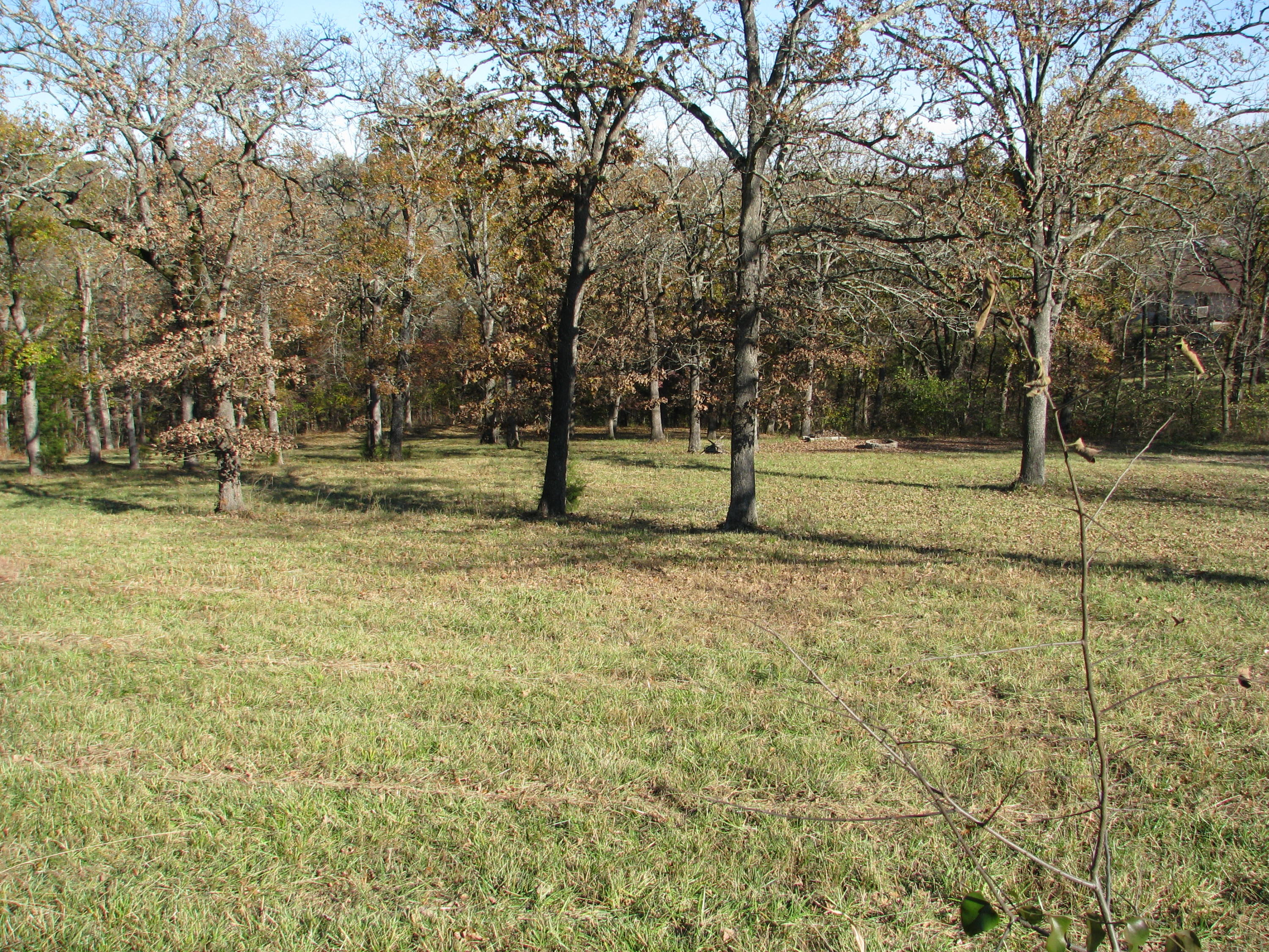 1836 Bee Creek Road Property Photo - Branson, MO real estate listing