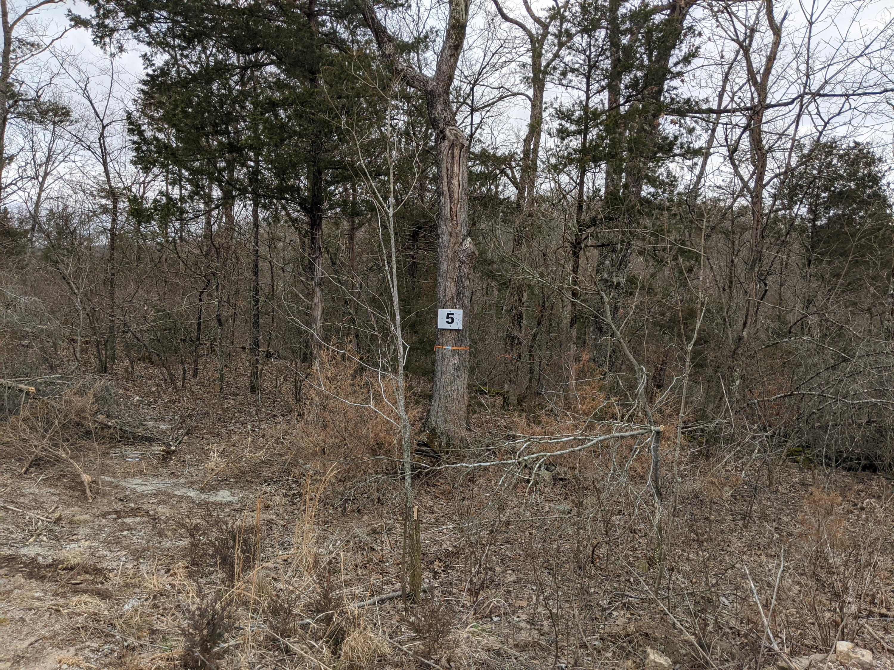 397 Shore Acres Dr. Drive Property Photo - Powersite City, MO real estate listing