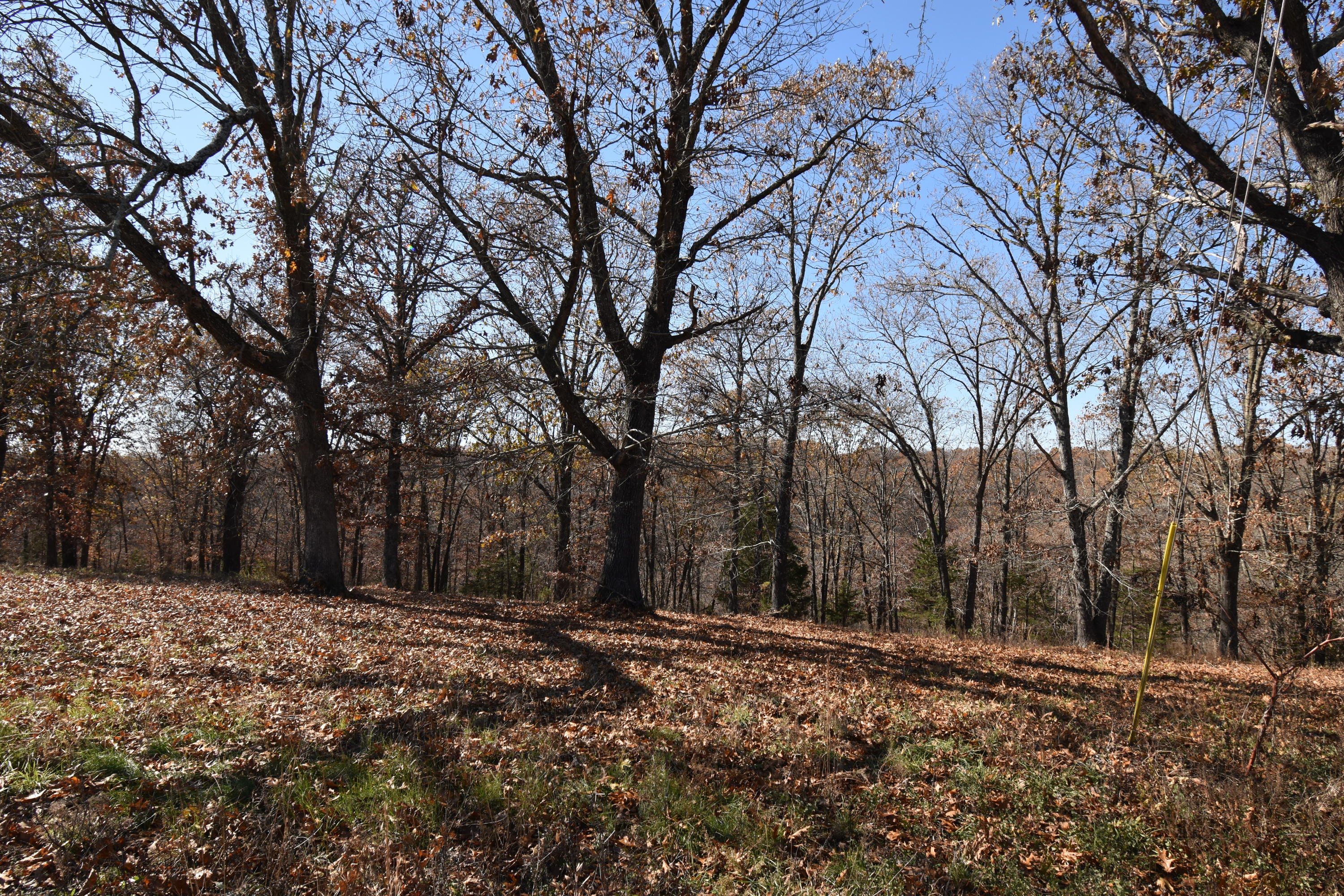 Lot 155 Panorama Drive Property Photo