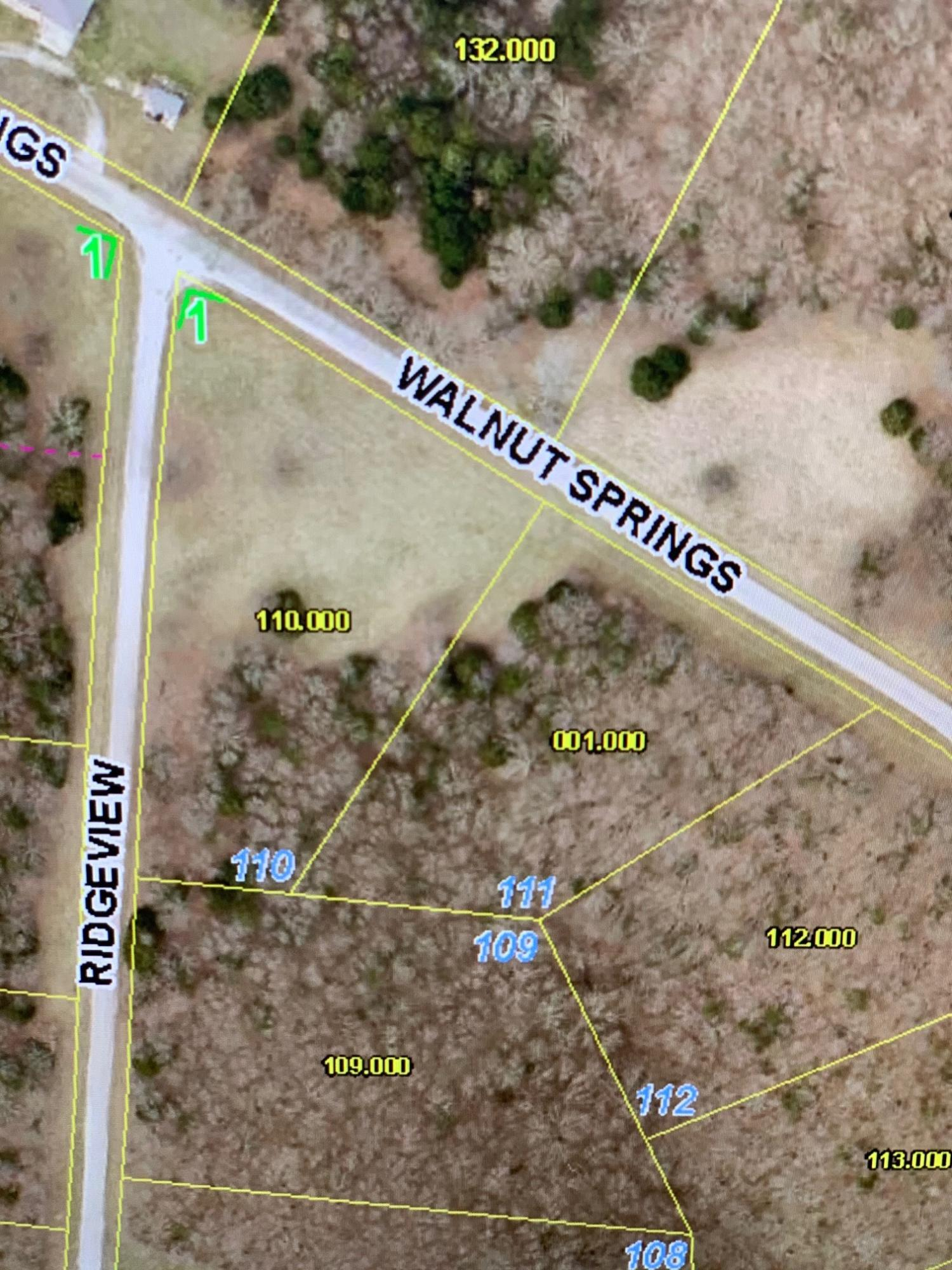 Lot 111 N Walnut Springs Drive Property Photo