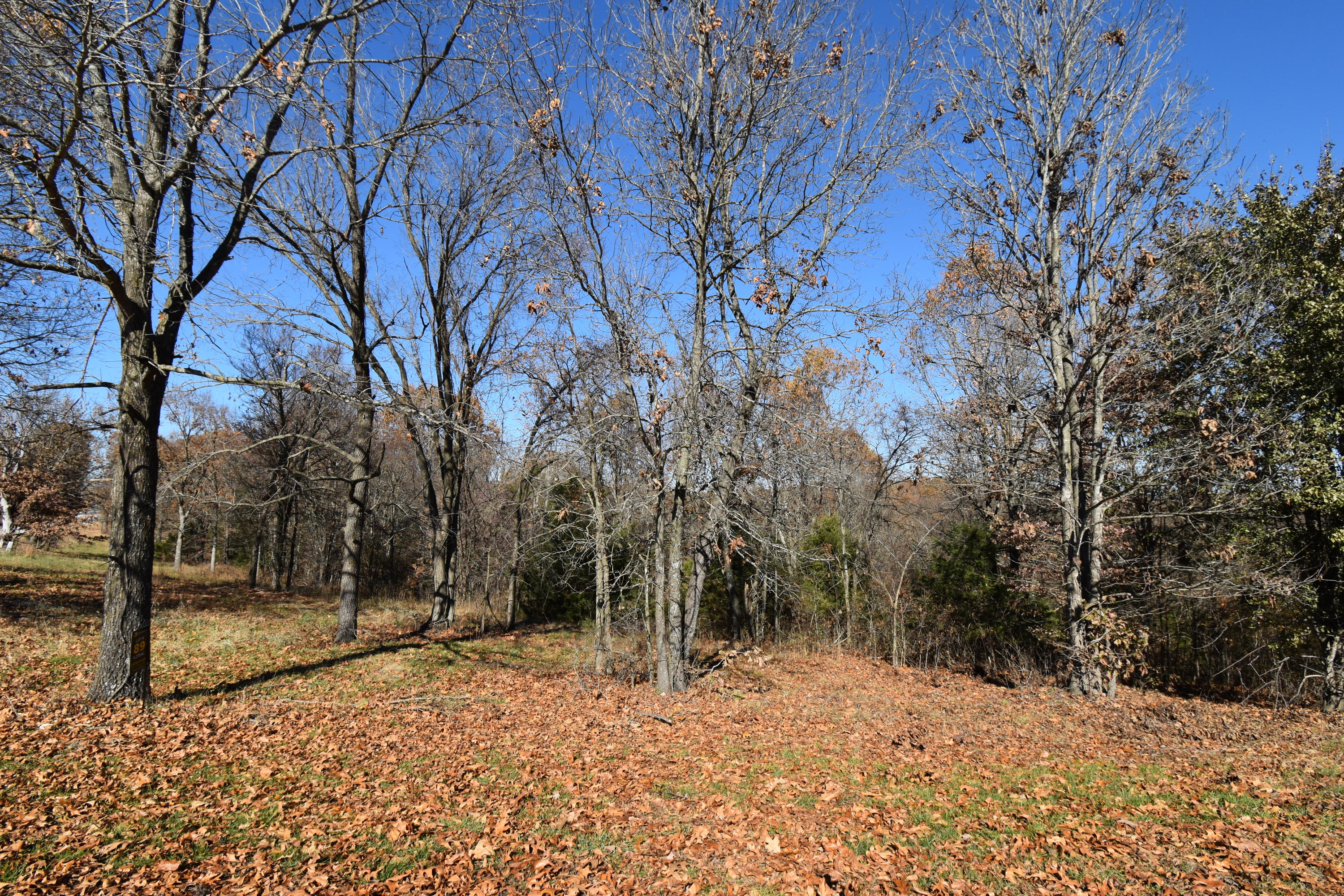 Lot 89 Forestview Court Property Photo