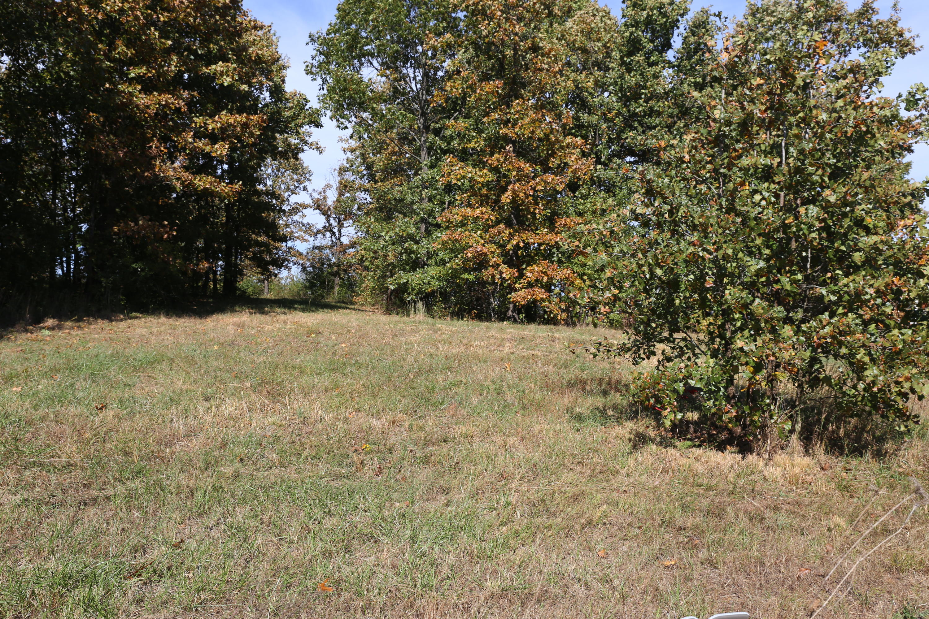 000 Wild Turkey Road Block 1 Lot 5 Property Photo