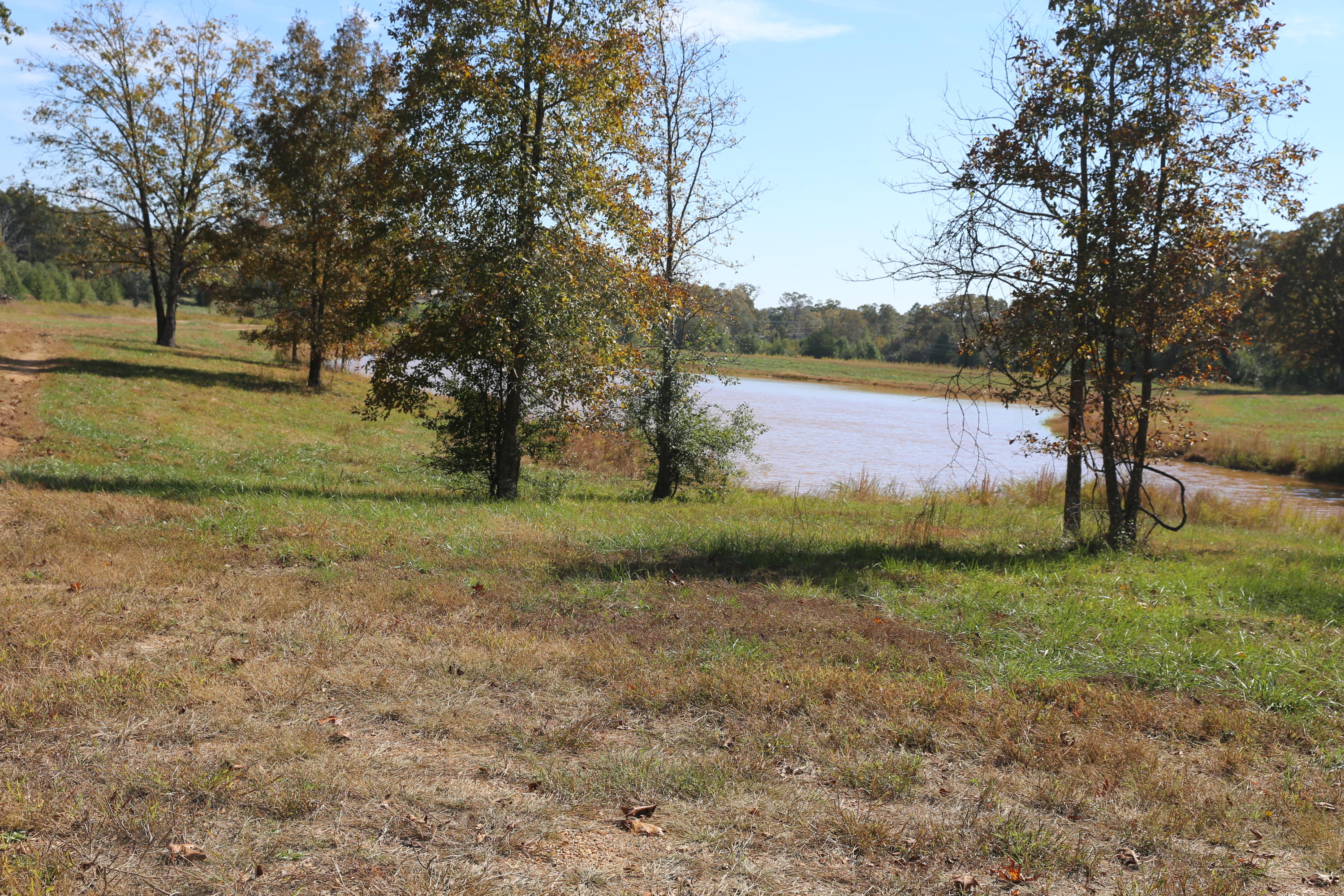 000 Wild Turkey Drive Block 1 Lot 18 Property Photo