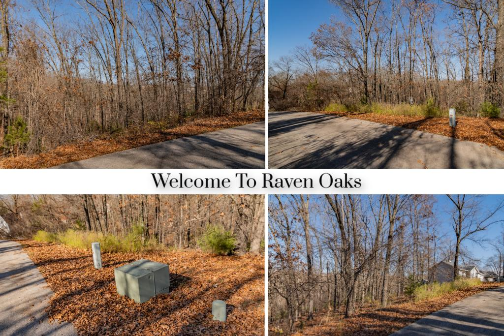 Lot #1 Raven Oak Property Photo