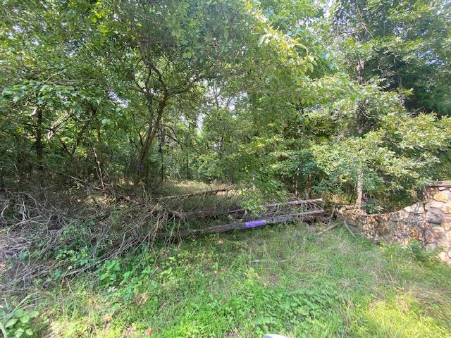 Tbd County Road 355 Lot 19 Property Photo - Dora, MO real estate listing
