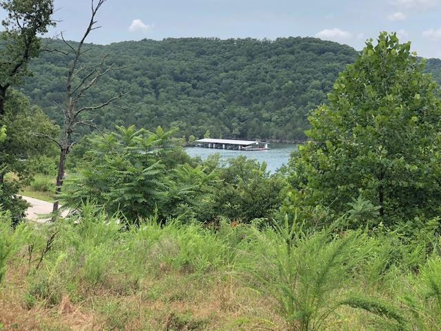 Lot 14 Tbd Josephs Cove Property Photo - Lampe, MO real estate listing