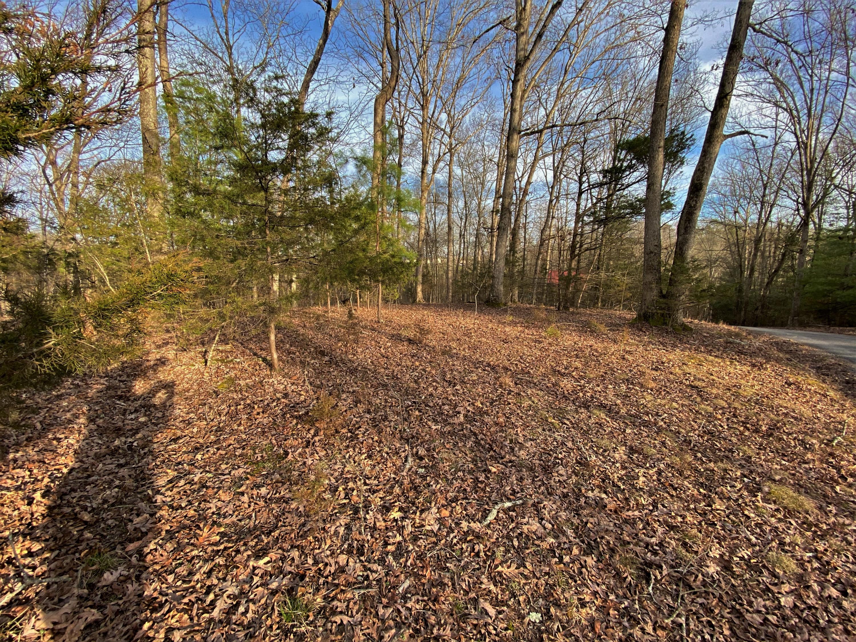 Lots 46-47 Emerald Way, Parrotsville, TN 37843 - Parrotsville, TN real estate listing