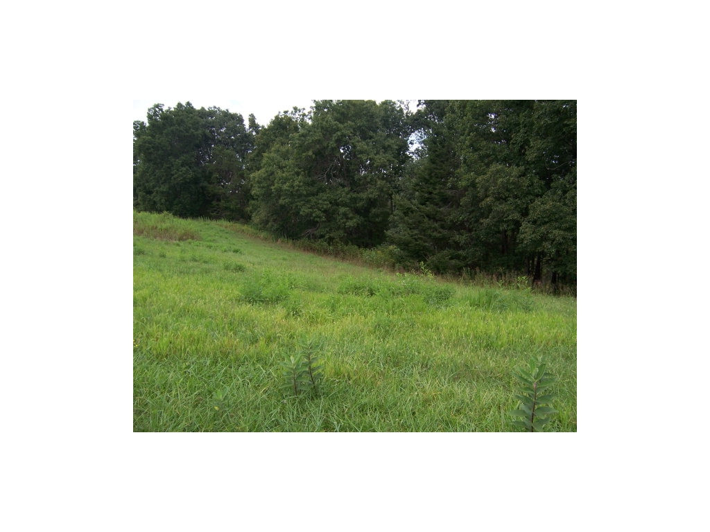 0 Lake Pointe Drive, Lot 39 Property Photo - Abingdon, VA real estate listing