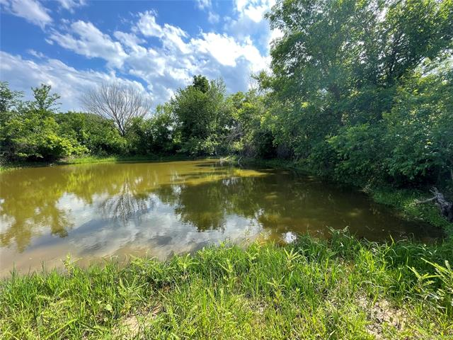 Water Moccasin Road Property Photo