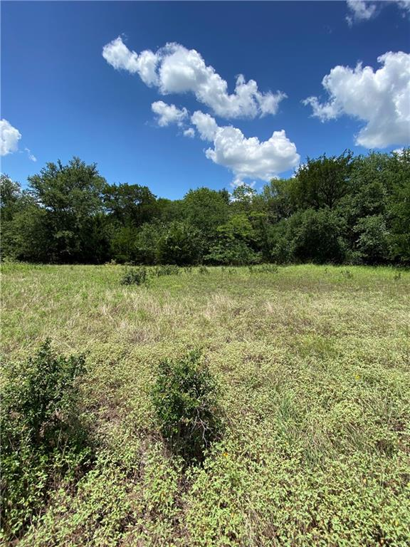 42045 Crooked Stick Drive Property Photo - Whitney, TX real estate listing
